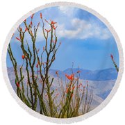 Ocotillo Cactus With Mountains And Sky Round Beach Towel