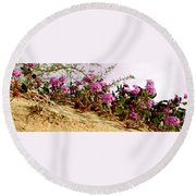 Ocotillo Wilds Round Beach Towel