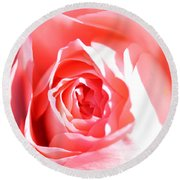 October Rose Close Up Round Beach Towel
