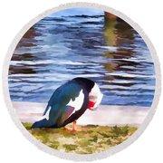 Odd Looking Duck In Swansboro Nc Round Beach Towel