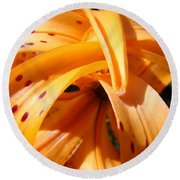 Office Art Floral Artwork Orange Tiger Lily Baslee Troutman Round Beach Towel