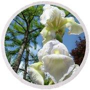 Office Art Giclee Prints White Yellow Iris Flowers Irises Baslee Troutman Round Beach Towel