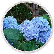 Office Art Hydrangea Flowers Blue Giclee Prints Floral Baslee Troutman Round Beach Towel