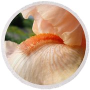 Office Art Irises Orange Iris Flowers 9 Giclee Prints Corporate Art Baslee Troutman Round Beach Towel