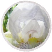 Office Art Irises White Iris Flower Floral Giclee Prints Baslee Troutman Round Beach Towel