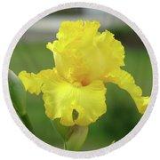 Office Art Irises Yellow Iris Flower Giclee Prints Baslee Troutman Round Beach Towel