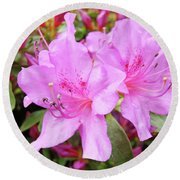 Office Art Pink Azalea Flower Garden 3 Giclee Art Prints Baslee Troutman Round Beach Towel