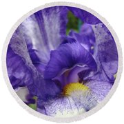 Office Art Prints Iris Flowers Purple White Irises 40 Giclee Prints Baslee Troutman Round Beach Towel