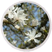 Office Art Prints Magnolia Tree Flowers Landscape 15 Giclee Prints Baslee Troutman Round Beach Towel