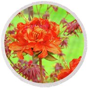 Office Art Prints Orange Azalea Flowers Landscape 13 Giclee Prints Baslee Troutman Round Beach Towel