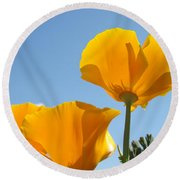 Office Art Prints Poppies Poppy Flowers Blue Skies Giclee Baslee Round Beach Towel