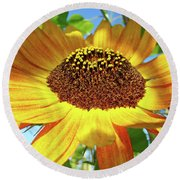 Office Art Prints Sunflowers Giclee Prints Sun Flower Baslee Troutman Round Beach Towel