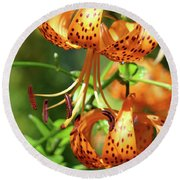 Office Art Prints Tiger Lilies Flowers Giclee Baslee Troutman Round Beach Towel