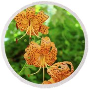 Office Art Prints Tiger Lilies Flowers Nature Giclee Prints Baslee Troutman Round Beach Towel