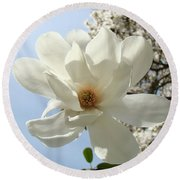 Office Art Prints White Magnolia Flower 66 Blue Sky Giclee Prints Baslee Troutman Round Beach Towel