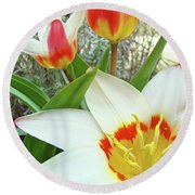 Office Art Tulips Tulip Flowers Giclee Art Prints Florals Baslee Troutman Round Beach Towel