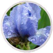 Office Art Wet Blue Iris Flower Floral Giclee Baslee Troutman Round Beach Towel