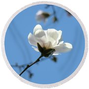 Office Artwork Prints Blue Sky White Magnolia Flower Round Beach Towel