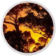Ohia Trees At Sunset Round Beach Towel
