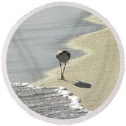 Looking For A Meal Round Beach Towel