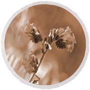 Old Fashioned Wild Flowers  Round Beach Towel