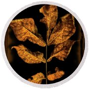 Old Hickory Leaf Round Beach Towel