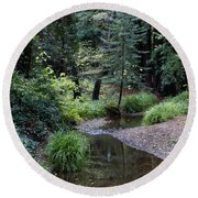 Old Mill Park In Mill Valley 2 Round Beach Towel