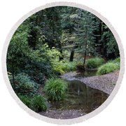 Old Mill Park In Mill Valley Round Beach Towel
