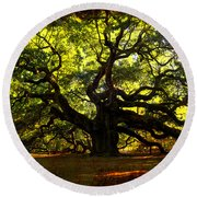 Old Old Angel Oak In Charleston Round Beach Towel by Susanne Van Hulst