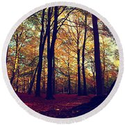 Old Tree Silhouette In Fall Woods Round Beach Towel