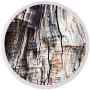 Old Tree Stump Tree Without Bark Round Beach Towel