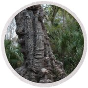 Old Trunk In The Swamp Round Beach Towel