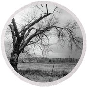 Old Winter Tree Grayscale Round Beach Towel