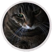 Ole Green Eyes Round Beach Towel