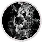 Oleander Flowers In Black And White 2 Round Beach Towel