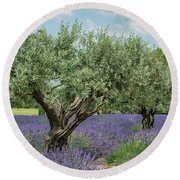 Olive Trees Of Provence Round Beach Towel