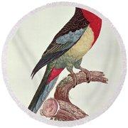 Omnicolored Parakeet Round Beach Towel
