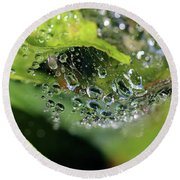 On Drops Of Dew Round Beach Towel