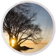 On Fire - Bright Sunrise Through The Willows Round Beach Towel