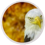 On Fire The American Bald Eagle Round Beach Towel