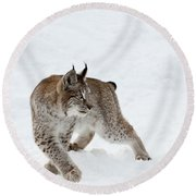 On High Alert Round Beach Towel