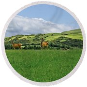 On The Look-out. Round Beach Towel