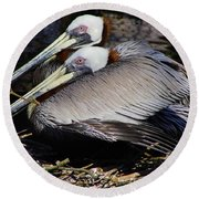 On Their Nest Round Beach Towel