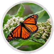 Once Upon A Butterfly 001 Round Beach Towel