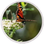 Once Upon A Butterfly 006 Round Beach Towel