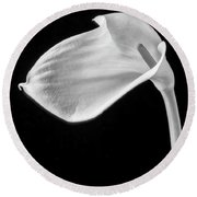 One Beautiful Calla Lily In Black And White Round Beach Towel