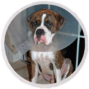One Biffed Boxer Round Beach Towel