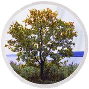 One Tree Hudson River View Round Beach Towel