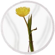 One Yellow Tulip Round Beach Towel