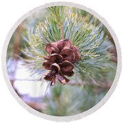 Open Pine Cone Round Beach Towel
